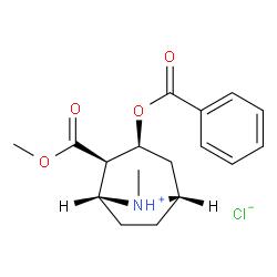 Order Cocaine Hydrochloride online